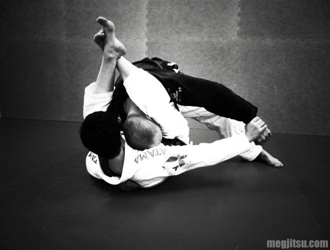 High guard with wrist control