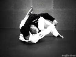 Wrist control from guard