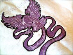 Raptor design embroidered to back of gi jacket